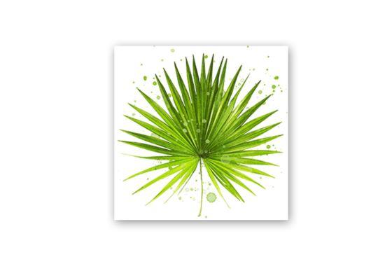 Servet Palm Leaf  33x33cm groen 20 stuks