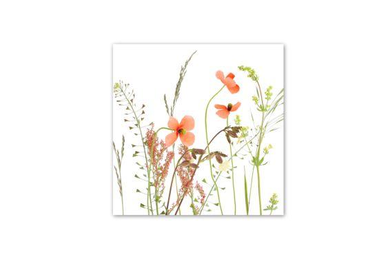 Servet Wiesenblumen 33x33cm multicolor 20 stuks