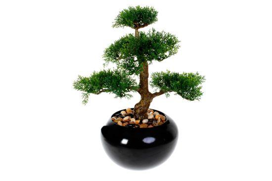 Kunstplant Bonsai H36cm