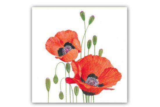 Servet Poppies 25x25cm rood 20 stuks