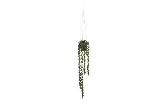 Kunstplant hangende Senecio  H56cm