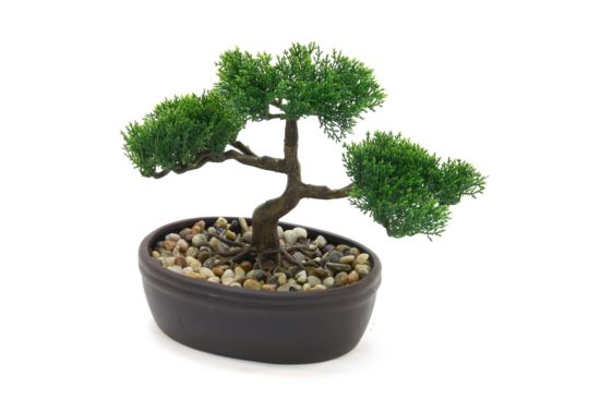 Kunstplant Bonsai H23cm