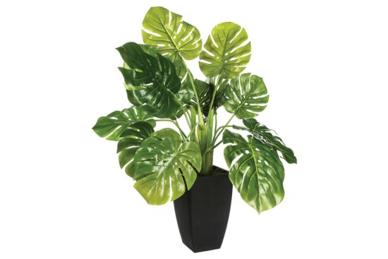 Kunstplant H70cm