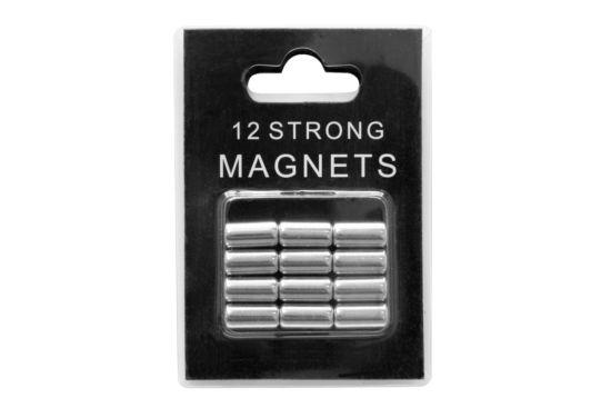Magneten zilver, set van 12