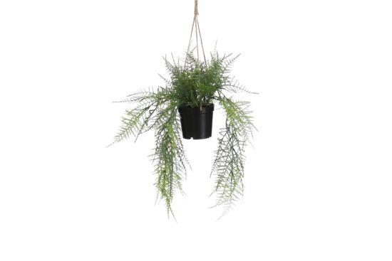 Hangende kunstplant Varen H43cm
