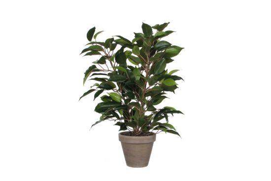 Kunstplant Ficus Natasja + pot Stan H40cm