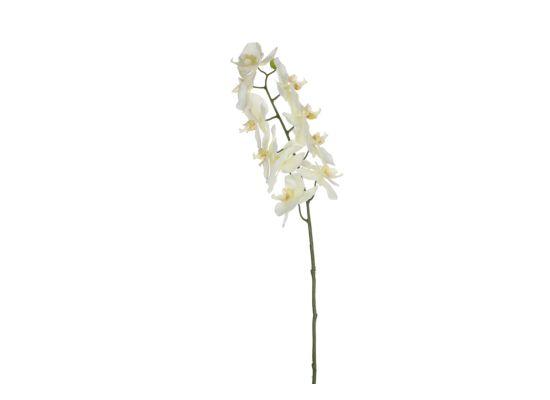 Kunsttak Phalaenopsis H71cm