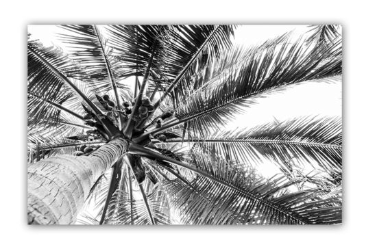 Print op canvas Palma 70x110cm