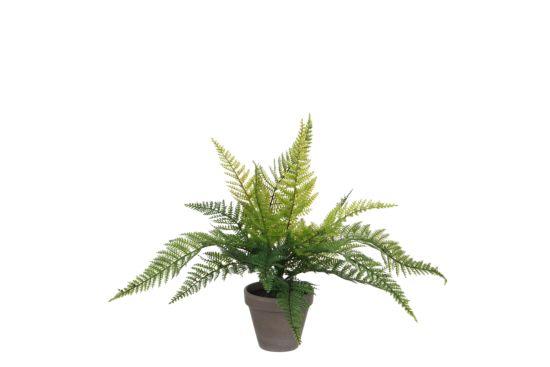 Kunstplant Varen + pot Stan H40cm