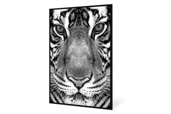 Print op canvas Eyes 102,6x142,6cm