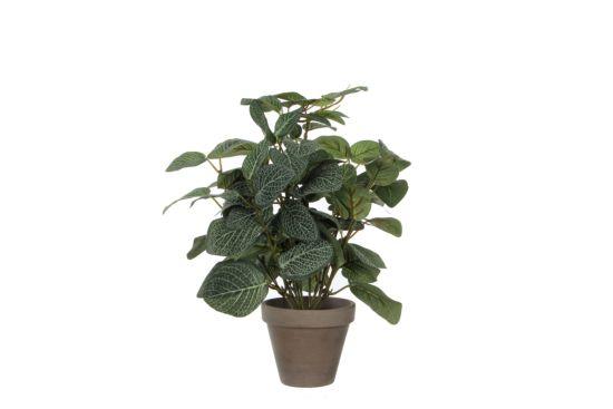 Kunstplant Pilea + pot Stan H35cm