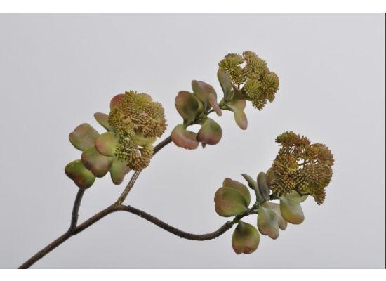 Kunsttak Succulent H66cm