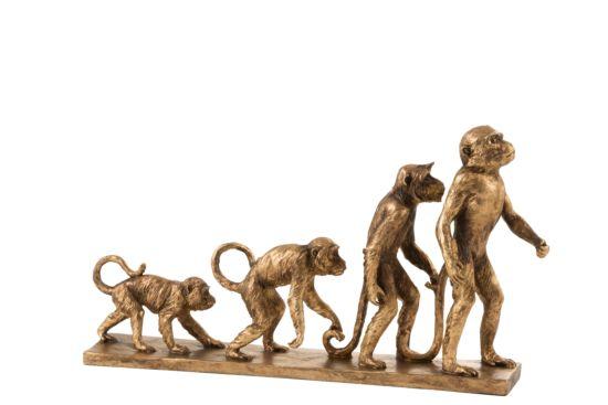 Beeld Aap Evolutie H25cm