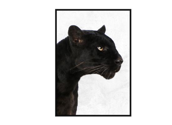 Foto met kader Black Panther 62,6cmx92,6cm