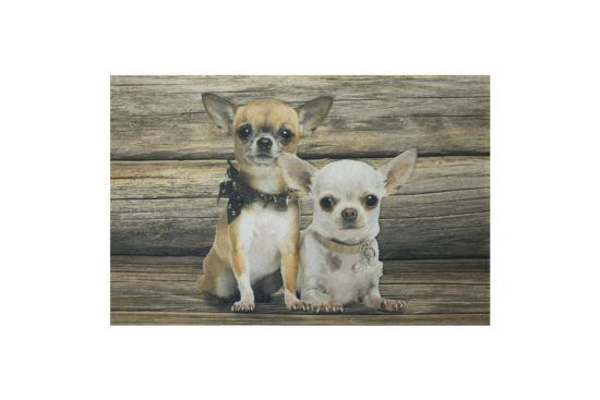 Deurmat Chihuahua 50x70cm