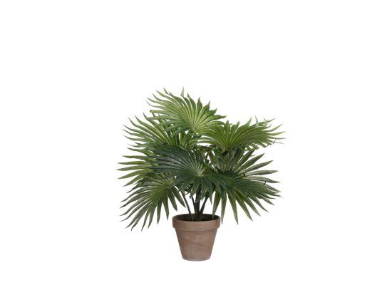 Kunstplant Palm H40cm