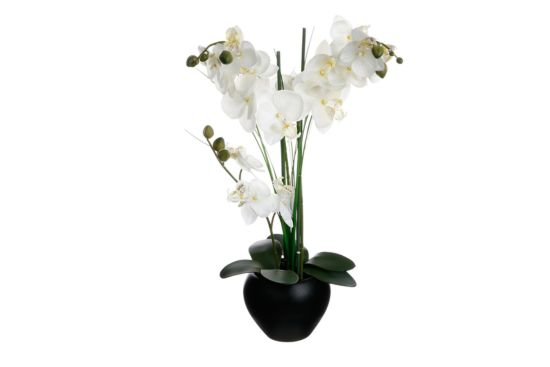 Kunstbloem Orchidee H53cm